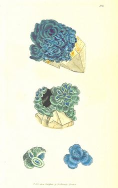 Image taken from page 402 of 'British Mineralogy: or coloured figures intended to elucidate the mineralogy of Great Britain. By J. Sowerby (...
