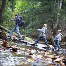 Kentucky Hiking Database - Hundreds of miles of scenic hiking trails in Kentucky ranging from bluegrass countryside to vast national forests and over 50 state parks. Gorgeous.