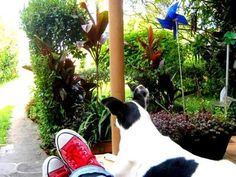 Blog de didiesposito :** tiléti & didi **, Musa no Jardim