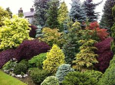 Front Yard Garden Design Beautiful combo of colors and textures - Shares Privacy Landscaping, Hillside Landscaping, Outdoor Landscaping, Front Yard Landscaping, Outdoor Gardens, Landscaping Ideas, Hydrangea Landscaping, Landscaping Contractors, Farmhouse Landscaping