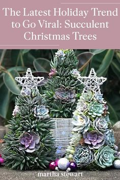 Upgrade your holiday decor and skip an expensive holiday tree with a pretty succulent Christmas tree instead. Place it on a tabletop, a mantel, or your coffee table and once Christmas is over, repot the individual succulents. #marthastewart #christmas #diychristmas #diy #diycrafts #crafts