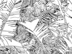 Wallpaper - Jungle lé1 by Tiphaine de Bodman - Objets - PETITE FRITURE - Editeur de Design - gros plan - Black