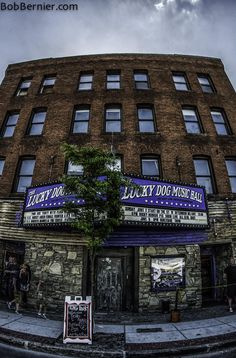 Day Lucky Dog Music Hall, previously known as Sir Morgans Cove. Worcester Massachusetts, Greater Boston, Photo A Day, Commonwealth, Sick, Buildings, Photographs, Bob, History