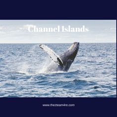 Visit the Channel Islands National Park & Marine Sanctuary- Near Ventura County! #Ventura