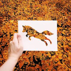 Coloring without paint? That's no problem for Nikolai Tolsty, an artist who uses colors of nature to paint his silhouettes of animals. Nikolai uses paper Land Art, Art Et Nature, Nature Paper, Wild Nature, Animal Cutouts, Foto Fun, Paper Animals, Cut Animals, Animal Silhouette