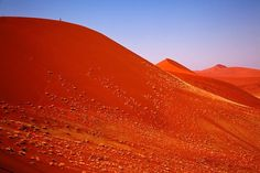#RED #DUNES #SOSSUSVLEI by Angelika Stern #Photocircle #nofilter #fineartphotography #photoart #Namibia #Africa #landscapes #deserts #sand #dune #bluesky #sky #minimalism  #Closethecircle - if you buy this photo Angelika Stern and Photocircle #donate 11% towards helping the #children from a #township in #SouthAfrica to obtain an #education