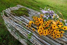 Life By Life ~ Sustainable Funeral Care | Natural Burial
