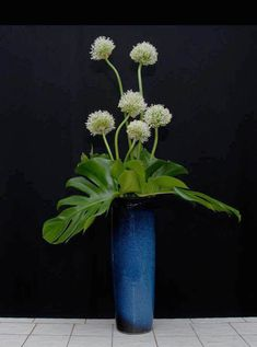 FloralSchool.com: Floral Design Albums From The Floral Design Experts at Rittners Floral School, Boston