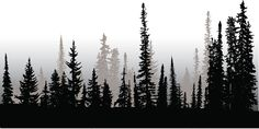 treeline-up-north-vector-id472258632 588×294 pixels