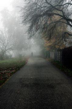 ~Fog~ Kingston Upon Thames (GB)