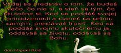 tmruiz31102010