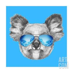 Portrait of Koala with Mirror Sunglasses. Hand Drawn Illustration. Art Print by victoria_novak at Art.com