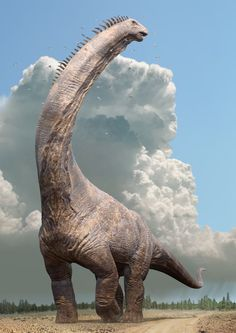 A female Alamosaurus rears her head up. From Dinosaurs In The Wild with graphics by Impossible Pictures