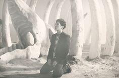 Him Chan -bap-