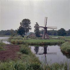 File:Spinnenkopmolen met molenaarshuis in de Weerribben - Kalenberg - 20351718 - RCE.jpg