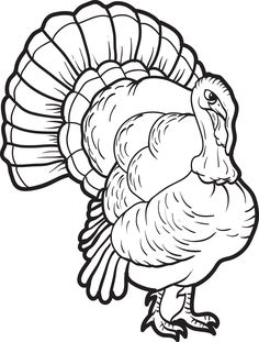 Turkey Coloring Pages, Farm Animal Coloring Pages, Thanksgiving Coloring Pages, Printable Coloring Pages, Coloring Pages For Kids, Coloring Books, Fall Coloring, Kids Coloring, Printable Turkey