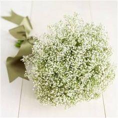 Fleria Flowers  #wedding #Fleria www.fleria.gr