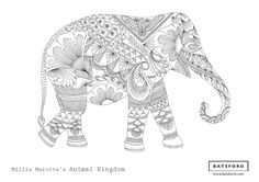 FREE printable download from Millie Marotta's Animal Kingdom #zentangle #adultcolouring #adultcoloring