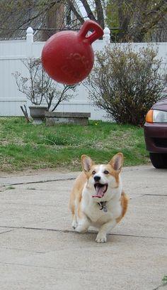 Jolly Ball time! yayayayayayay!