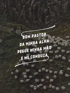 bom pastor da minha alma, pegue minha mão e me conduza.