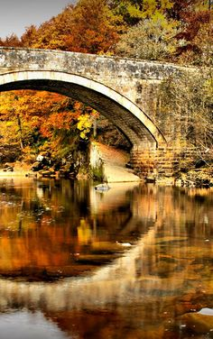 Fall ~ Penton Bridge, Scotland by Dave Liddle