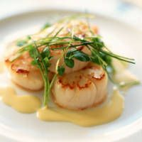 A nice Buerre Blanc recipe.  It's mostly wine and butter, how can you lose?  And it's so flavorful that you only need a little, so you're not consuming too much butterfat if you are on a diet.  To kill or die for on seafood!