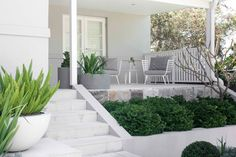 Our clients here wanted their Randwick garden to be low fuss & look low fuss. They wanted outdoor spaces that looked relaxed, with a simple, soft palette