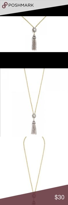 Icestorm tassel pendant necklace Worn only a handful of times! This statement tassel necklace is perfect for any occasion Baublebar Jewelry Necklaces