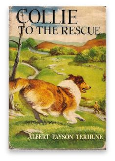 Collie to the Rescue by Albert Payson Terhune