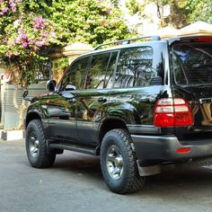 Landcruiser 79 Series, Landcruiser 100, Land Cruiser 4x4, Toyota Land Cruiser 100, Lexus 470, Riverside Cottage, Offroader, Camper Van Conversion Diy, Rottweiler Dog