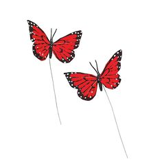 Red Feather Butterflies - OrientalTrading.com $4.25 for 6