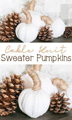 Super cute Cable Knit Sweater Pumpkins from Thrift Store and Dollar Tree finds! Easy tutorial using thrift store cable knit sweater & dollar store pumpkins. Sweater Pumpkins, Faux Pumpkins, Craft Activities For Kids, Crafts For Kids, Dollar Tree Finds, Thrift Store Crafts, Pumpkin Decorating, Fall Decorating, Diy Pumpkin