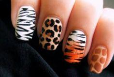 Various Pattern of Nail Art Animal Print