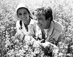Albert Finney y Audrey Hepburn (1967)