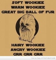 Soft Wookie, Warm Wookie...