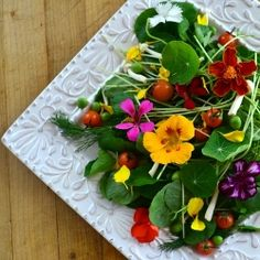 I made this beautiful salad with edible flowers from my garden---come find out more abut identifying and using edible blossoms!