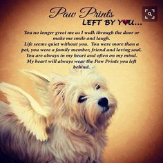 Dog Poems, Dog Quotes, Animal Quotes, Dog Sayings, Dachshund Quotes, I Love Dogs, Puppy Love, Cute Dogs, Highlands Terrier