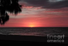 Available on many products on Fine Art America. Photograph taken by Tracey Everington of Tracey Lee Art Designs. Pink Sunset, Sunset Beach, Palm Tree Sunset, Palm Trees, Sunset Images, Art Designs, Fine Art America, Art Photography, Wall Art