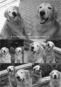 Golden SMILES
