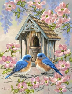 Diamantmalerei – Couple Birds And Love House Bird Pictures, Pictures To Paint, Fabric Painting, Painting & Drawing, Diy Painting, Painting Flowers, Painting Canvas, Vogel Gif, Vintage Birds