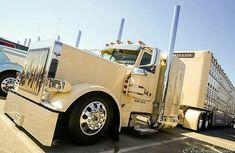 Peterbilt 389 3 Axle Bull Wagon