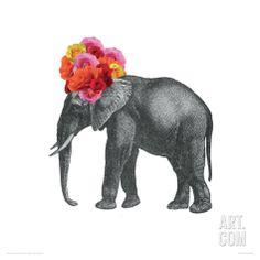 Elephant Giclee Print by John Murphy at Art.com
