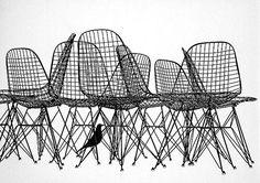 DKR chair, Charles Eames, 1951