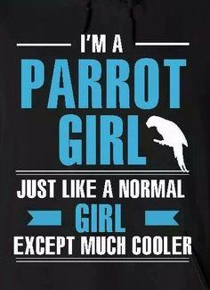 Parrot girl