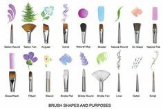 Brush shapes and what they do