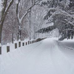 @ the River Walk, Buckhannon WV