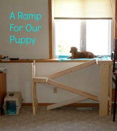 A Ramp for our Puppy