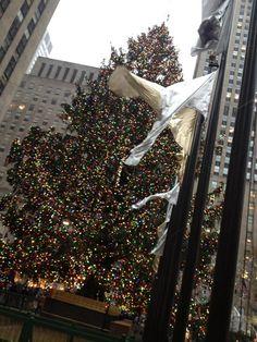 Rockefeller Christmas New York City