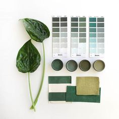 Like nature, green evokes tranquillity and composure. It is believed to relieve stress by helping people relax. Green Color Schemes, Green Colour Palette, Green Colors, Material Board, Inspirational Wallpapers, Green Fabric, Color Pallets, Colorful Interiors, Mood Boards
