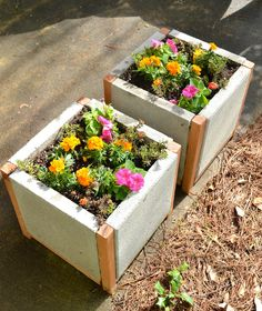 Using pavers as planters. I would paint the concrete in fun colors. Love this … - Easy Diy Garden Projects Diy Concrete Planters, Concrete Pavers, Diy Planters, Garden Planters, Tall Planters, Paver Sand, Decorative Planters, Garden Boxes, Balcony Garden